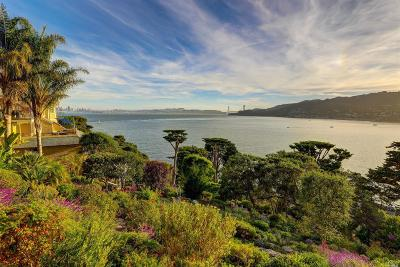 Marin County Residential Lots & Land For Sale: 333 Belvedere Avenue