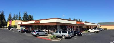 Sonoma County Commercial For Sale: 6595 Commerce Blvd