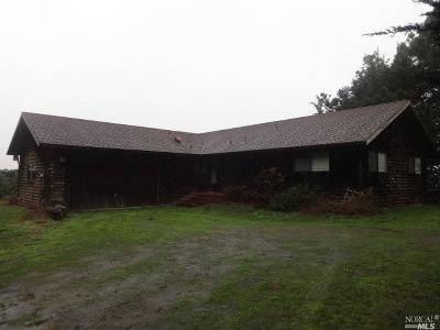 Point Arena Single Family Home Contingent-Show: 44300 Lighthouse Road