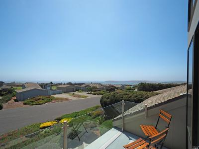Bodega Bay Single Family Home For Sale: 195 Condor Court