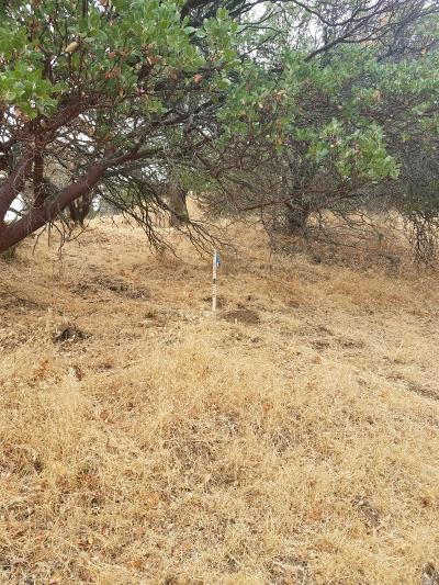 Napa Residential Lots & Land For Sale: 197 Country Club Lane