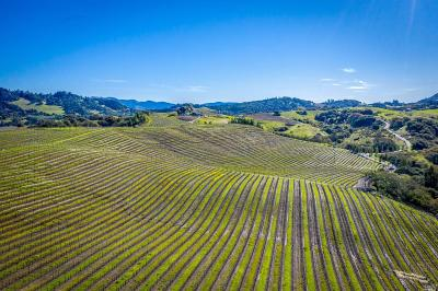 Sonoma County Residential Lots & Land For Sale: 116 Mary Paige Lane