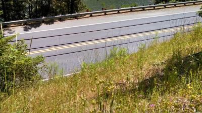 Guerneville Residential Lots & Land For Sale: 16808 Hwy 116