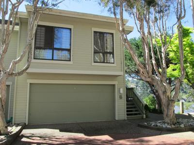 Mill Valley Condo/Townhouse For Sale: 61 Eucalyptus Knoll Street