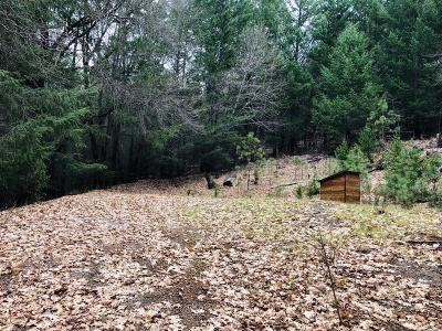 Kelseyville Residential Lots & Land For Sale: 10475 Rosa Trail