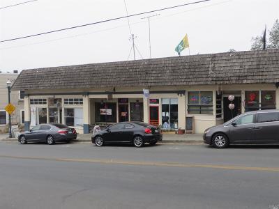 Penngrove CA Commercial For Sale: $725,000