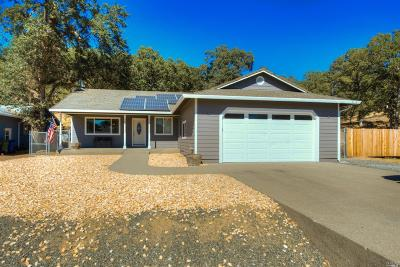 Hidden Valley Lake Single Family Home For Sale: 19408 Mountain Meadow Road North
