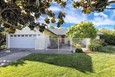 Napa Single Family Home For Sale: 1700 River Park Boulevard