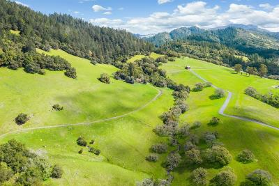 Sonoma County Single Family Home For Sale: 965 Los Alamos Road