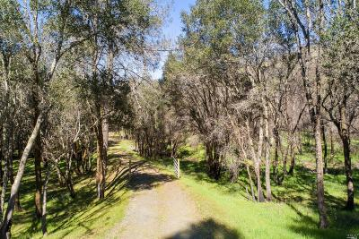 Calistoga Residential Lots & Land For Sale: 8535 Franz Valley School Road