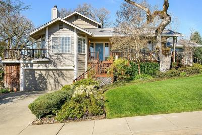 Single Family Home For Sale: 1795 Mikes Way