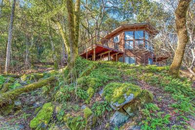 Sonoma County Single Family Home For Sale: 1799 Foxridge Road