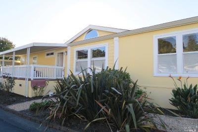 Petaluma Mobile Home For Sale: 10 Pamela Drive #10