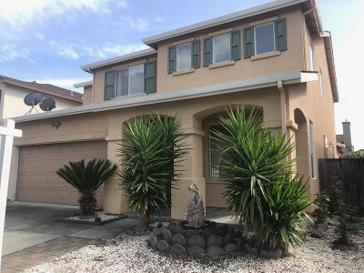 Santa Rosa Single Family Home For Sale: 2962 Stonesheep Lane