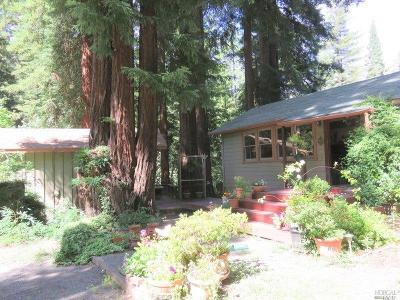 Cazadero Single Family Home For Sale: 19230 Fort Ross Road