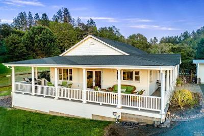 Calistoga CA Single Family Home For Sale: $1,550,000