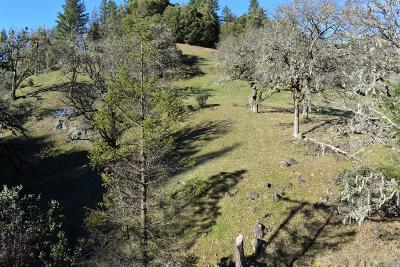 Redwood Valley Residential Lots & Land For Sale: 19851 Scenic Drive