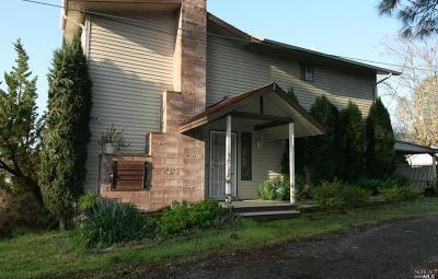 Clearlake Single Family Home For Sale: 13537 Santa Clara Avenue