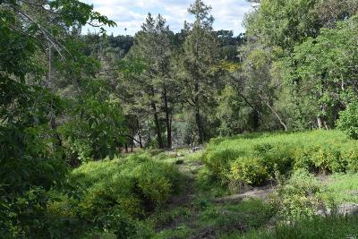 Healdsburg Residential Lots & Land For Sale: 2435 Riverview Drive