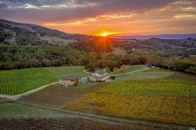 Santa Rosa Single Family Home For Sale: 5445 Sonoma Mountain Road