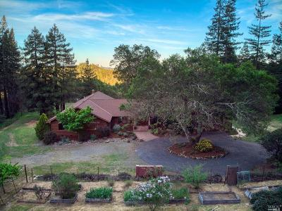 Napa County Single Family Home For Sale: 3460 Mount Veeder Road
