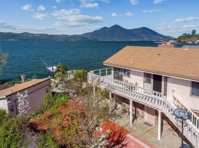 Clearlake Single Family Home For Sale: 13319 Lakeshore Drive