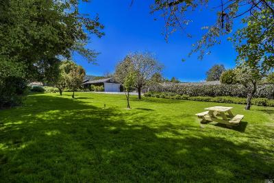 Novato Single Family Home For Sale: 1885 Indian Valley Road
