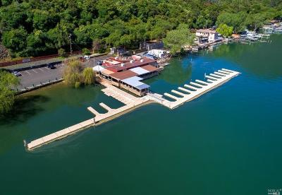 Kelseyville CA Business Opportunity For Sale: $595,000