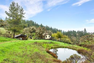 Ukiah CA Single Family Home For Sale: $475,000