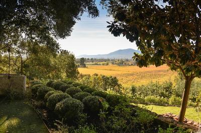 St. Helena Rental For Rent: 1730 Silverado Trail