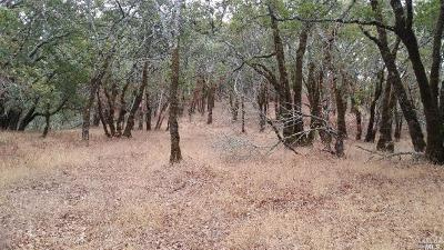 Sonoma County Residential Lots & Land For Sale: 1100 Leslie Road