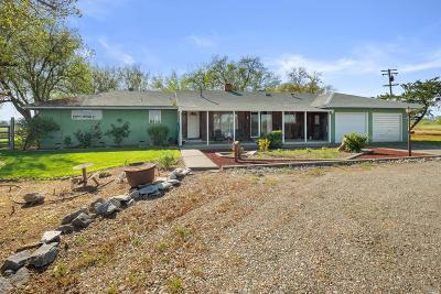 Woodland Single Family Home For Sale: 20900 County Road 95