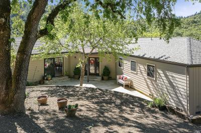 Healdsburg Single Family Home For Sale: 2125 Brack Road
