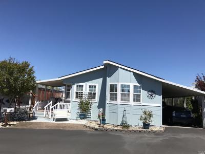 Windsor Single Family Home For Sale: 1037 Lake Drive