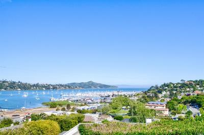 Sausalito Condo/Townhouse For Sale: 109 Filbert Avenue