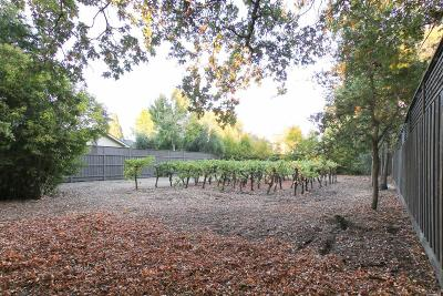 Sonoma County Residential Lots & Land For Sale: 315 East Macarthur Street East