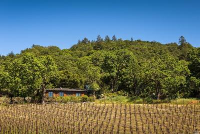 Marin County, Sonoma County, Mendocino County, Napa County, Lake County Single Family Home For Sale: 6000 Wildwood Mountain Road