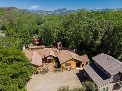 Glen Ellen Single Family Home For Sale: 13352 Arnold Drive