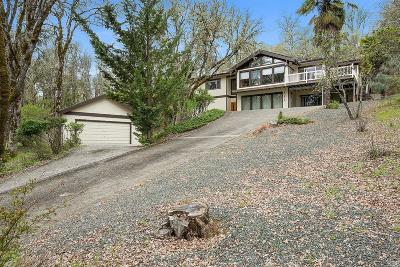 Lakeport Single Family Home For Sale: 865 Jerry Drive