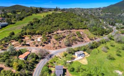Kelseyville Residential Lots & Land For Sale: 10235 Point Lakeview Road
