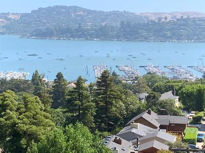 Sausalito Single Family Home For Sale: 262 Santa Rosa Avenue