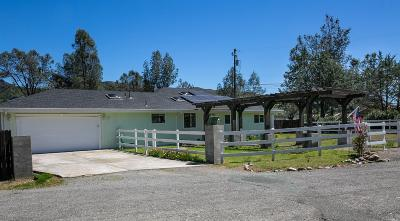 Clearlake Single Family Home For Sale: 2920 Chalk Mountain Way