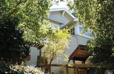 Mill Valley Multi Family 2-4 For Sale: 107 Stadium Avenue