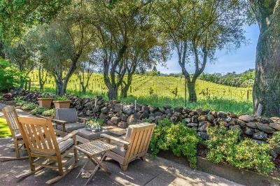 Napa County Single Family Home For Sale: 2325 Spring Mountain Road