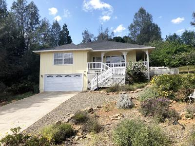 Hidden Valley Lake Single Family Home For Sale: 17895 Deer Hill Road