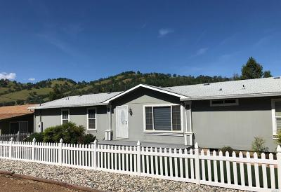 Clearlake Single Family Home For Sale: 2872 Spring Valley Road