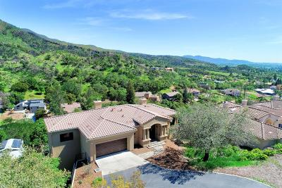Napa County Single Family Home For Sale: 220 Wintergreen Circle