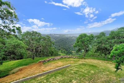 Napa Residential Lots & Land For Sale: 71 Grandview Road