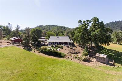 Lower Lake Single Family Home For Sale: 17900 Cantwell Ranch Road