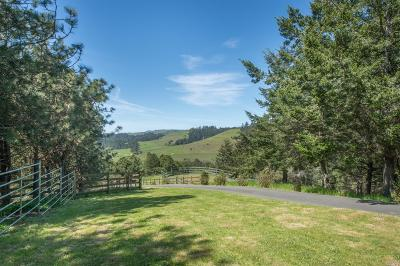 Occidental Single Family Home Contingent-Show: 1109 Tannery Creek Road